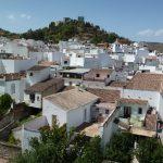 Visita a la almazara «Mudéjar» en Monda (Málaga)