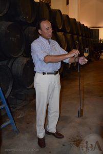 Rafael Salado explica uno de sus vinos